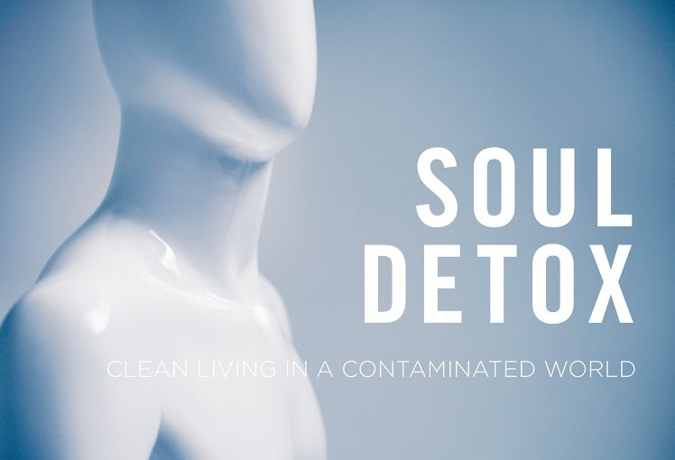 Study Soul Detox with a Group!